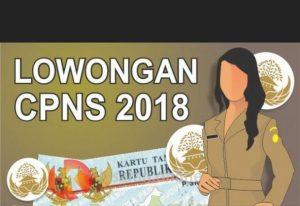 Pendaftaran CPNS 2018 di sscn.bkn.go.id Mulai Dibuka 2 Hari Lagi, Bagi yang belum daftar berikut Alurnya